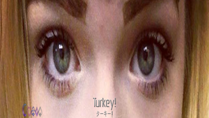 Kerriann Molea: Turkey! (November of 20I4) by Royameadow