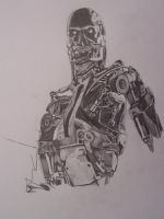Terminator by beefhole