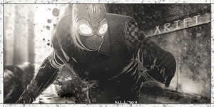 Spiderman Noir by Xrift