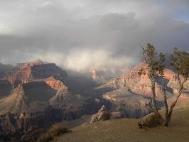 Grand Canyon 3 by samanthawagner