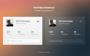 Twitter Interface*Dribbble Rebound by SuTegin