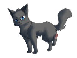 Cinderpelt (new style) by TaLeeja