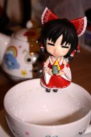 Reimu tea time- Test shot by Charlotte-Chan