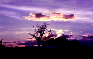 African Sunset by morkovka55