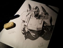 TF MTMTE - Emerging by pika