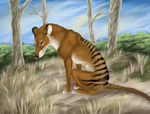 Sitting Thylacine by Forbidding