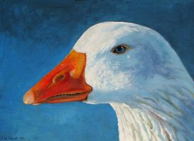 white goose by dutchway