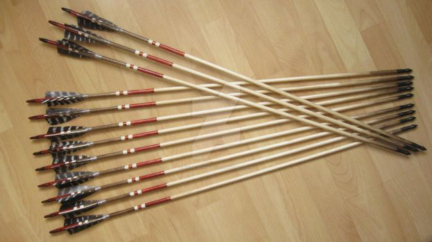 Training arrows for traditional bow, red set by Aylie-Serinde