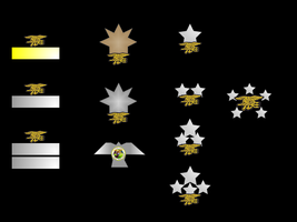 US Navy SEALs Collar Ranks by sanji1119