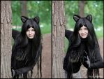 Wolf_3 by AngieVaria