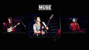 MUSE by Bajbi