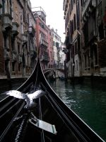 Venice from a Gondola by arleencvh