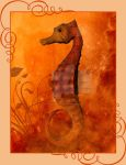 The Sea Horse by miss-angelicfairy