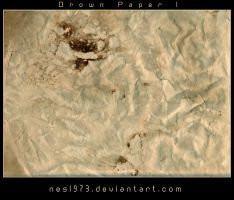 Brown Paper 1 by nes1973