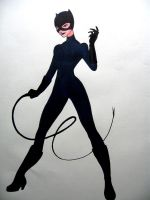 Catwoman 2 by Mathewism