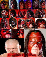 15 Years OF Kane Photo Collage by Idera