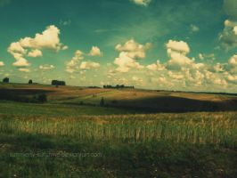 Summer fields I by summerly-sunshine