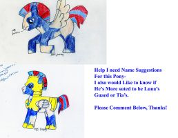 Needs a Name by ponygirl74