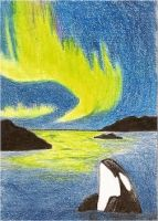 Northern Light ACEO by whitetippedwaves