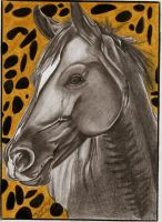 Horse Portrait by annygreen