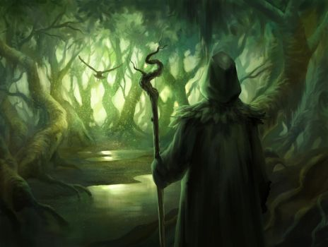 Forest / Swamp Druid by Night2