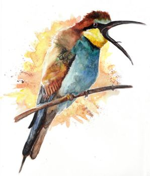 Bee-eater by Paintwick