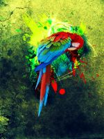 Parrot by ReiGee
