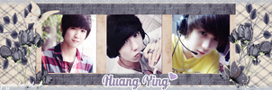 [Cover Zing] Hannie's Request - Huang Ying by YongYoMin