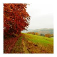 Autumn feelings no.17 by landscapesaxony