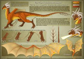 Dragoness Ref Sheet by DrakainaQueen