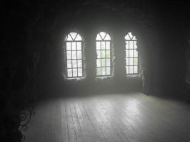 The Windows of The Castle by sonichero360