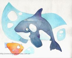 ORca Killer Whale by fbruno