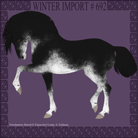 Winter Import #692 by DovieCaba
