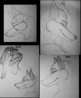 oc anthro head sketches1 by Dr-Pen