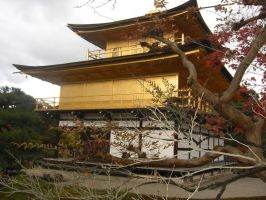 Kinkakuji Temple. and branches by blindbutblink