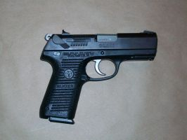 Stock Ruger P95- 53 by TheBitterBullet