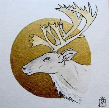 Golden Caribou by AwesomelyAimless