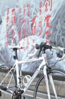 Continue Cycling 01 by Anomonny