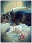 together forever  by ItalianDream