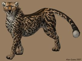 King Cheetah by Alex-Duma