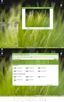 theme 'Grass' For XP by tochpcru