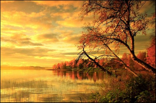 Fall.. V by closer-to-heaven