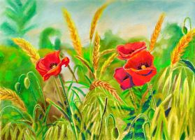 Spikelets and poppies by YourAngel5