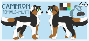 Cameron Official Ref by DeadOnContact