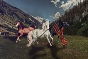 CHARGE!!!! For Freedom by xdancingintherain