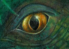 woodland dragon detail eye by aldafea