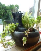 Boot Plant by VGJekyll