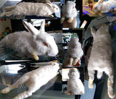 Rabbit soft mount - SOLD by mute-owl