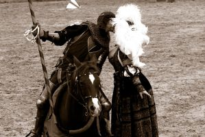 The Joust - 4 of 4 by lucifie