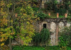 This old house by Mr-Vicent